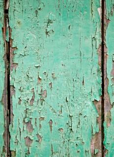 Gartenhaus Streichen Schutz Pflege Durch Farbbehandlung