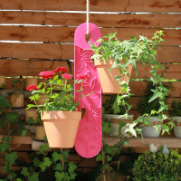 Blumenampel Himbeer