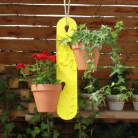 Blumenampel Zitrone